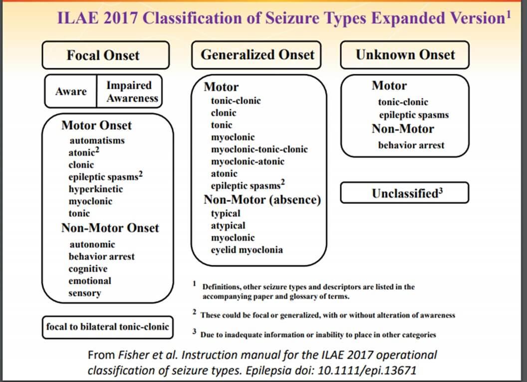 Epilepsilerde Sınıflandırma